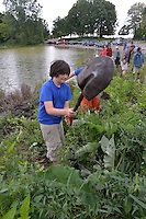 RBC Wealth Management and Friends of the St. Clair River planting native aquatic plants at Lake Chipican, with the help of students from King George VI Public School