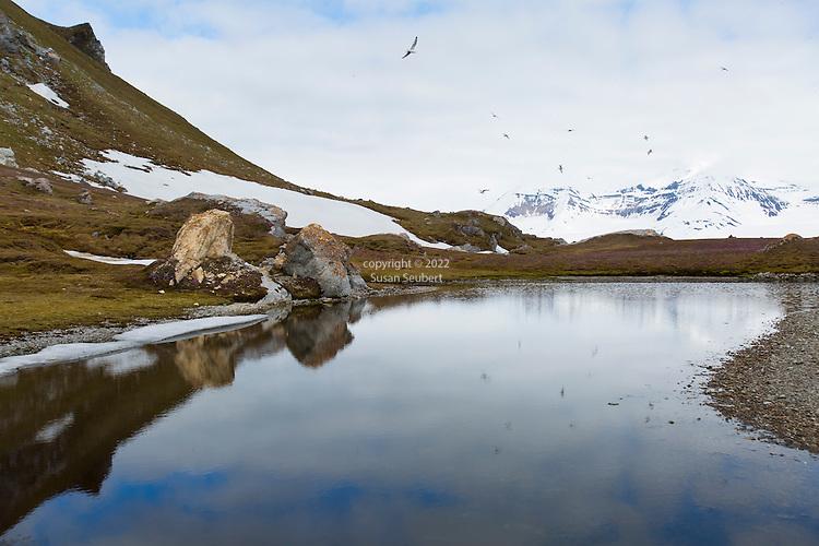 Gnalodden, Svalbard, Norway