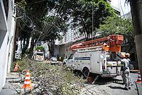 SÃO PAULO,SP, 21.03.2016 - QUEDA-ARVORE - Uma árvore caiu sob a fiação elétrica interrompendo o fornecimento de energia, na Rua Leandro Dupret, altura do número 85, na Vila Clementino região sul de São Paulo, nesta segunda-feira, 21. (Foto: Rogério Gomes/Brazil Photo Press)