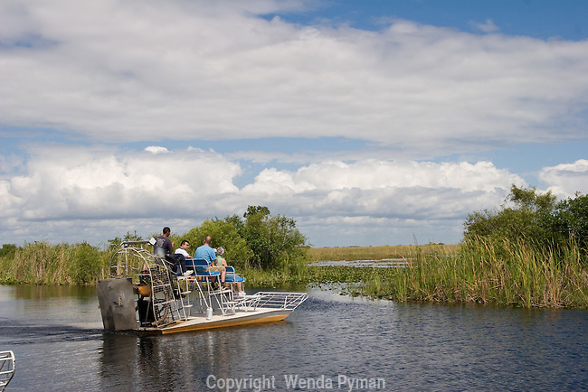 Airboat rides on the Shark River Slough provide visitors a unique excursion into the Everglades and sawgrass.