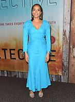 "10 January 2019 - Hollywood, California - Carmen Ejogo. ""True Detective"" third season premiere held at Directors Guild of America. Photo Credit: Birdie Thompson/AdMedia"