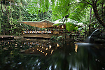Julaymba Restaurant in the rainforst at Daintree Eco Lodge and Spa.  Daintree, Queensland, Australia
