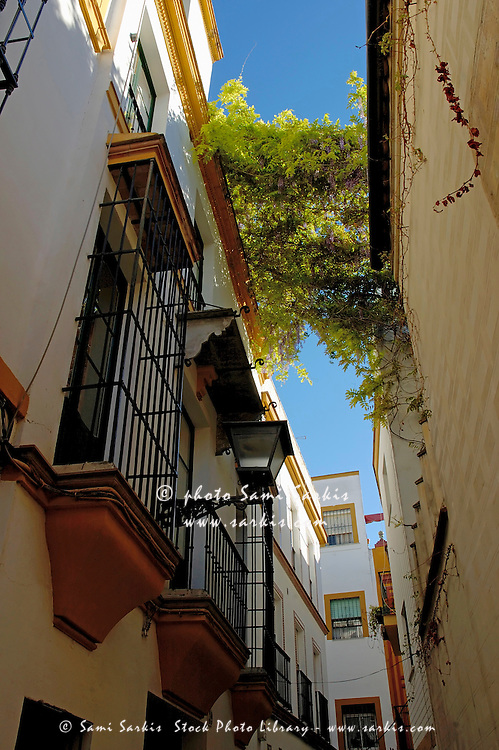 Narrow alley with buildings facades, Barrio Santa Cruz, Seville, Andalusia, Spain.