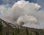 Fire blows up on ridge near Wawona Dome at the South Fork Fire near Wawona on August 14, 2017 in Yosemite National Park.  Photo By Al Golub/Golub Photography