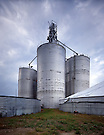 Grain Elevators.Long Pine, Nebraska