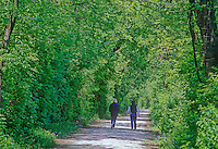 419-52 Two women hiking along I&M Canal Hiking Trail, between Chanahon State Park and McKinley Woods Forest Preserve in Will County, Illinois
