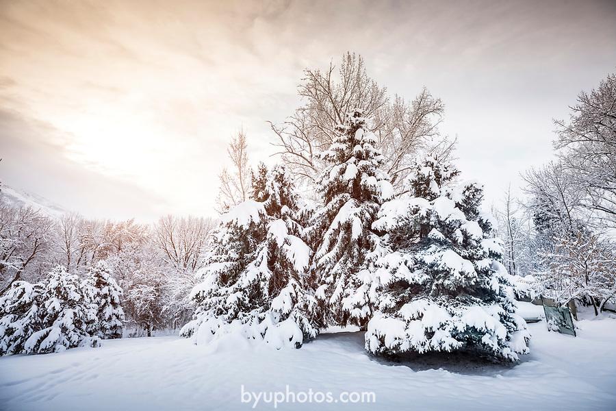 _YU18755<br /> <br /> 1701-01 GCS Snow<br /> <br /> December 9, 2016<br /> <br /> Photography by Nate Edwards/BYU<br /> <br /> © BYU PHOTO 2016<br /> All Rights Reserved<br /> photo@byu.edu  (801)422-7322