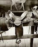 USA, Wyoming, horse saddle on wooden railing, Old Trail Town, Cody (B&W)