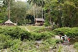 PHILIPPINES, Palawan, Barangay region, hiking through the jungle to visit the Batak people in Kalakwasan Village