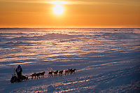 Ketil Reitan runs on the Bering Sea at sunset on the trail heading toward the finish at Nome on Wednesday March 14th during the 2018 Iditarod Sled Dog Race.  <br /> <br /> Photo by Jeff Schultz/SchultzPhoto.com  (C) 2018  ALL RIGHTS RESERVED