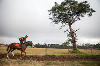 After more than 20 years of competitive racing Lesley Sercombe has won 12 Championships, and is currently the only woman jockey racing in Kenya. Sercombe begins her daily riding routine at 6 am and rides until 9:30 then oversees feeding in the yards. Her fitness routine is legendary. After riding she will often run 20 Km. Her family is deeply involved in the Kenyan horseracing scene. Her mother Patsy Sercombe is a leading trainer, Her father John is the course vetrinarian and one of the directors of the Jockey Club of Kenya. Nairobi, Kenya. March 13, 2013. Photo: Brendan Bannon
