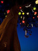 Um dos maiores símbolos da Amazônia, a Samaumeira, a mais alta árvore da floresta, é enfeitada com arranjos feitos com garrafas pet.<br /> Em Benevides, a cerca de 40 km de Belém, moradores juntaram 2 milhões de garrafas pet para montar a decoração natalina nas praças e ruas da cidade. A iniciativa, da prefeitura em parceria com a associação de catadores, abriu oportunidades de emprego, estimulou os moradores a compreender a importância da reciclagem e garantiu a beleza do Natal unindo tradição e criatividade.<br /> Benevides, Pará, Brasil<br /> Foto Paulo Santos <br /> 15/12/2011