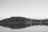 Pará State, Brazil. Xingu River. Forested island reflected in the river.