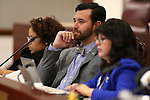 From left, Nevada Assembly members Dina Neal, D-North Las Vegas, Stephen Silberkraus, R-Henderson, and Irene Bustamante Adams, D-Las Vegas, work in committee at the Legislative Building in Carson City, Nev., on Monday, March 2, 2015. <br /> Photo by Cathleen Allison