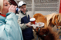 Horse dealers take a coffee break at the Smithfield horse market.<br />