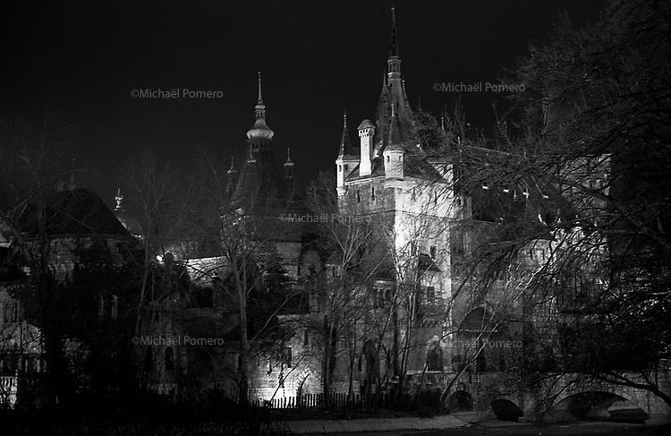 (19...25).12. 2013     Budapest (Hungary)<br /> <br /> Chateau de Vajdahunyad.<br /> <br /> Vajdahunyad castle.