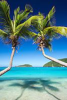 Maho Bay, St. John<br /> Virgin Islands National Park<br /> US Virgin Islands