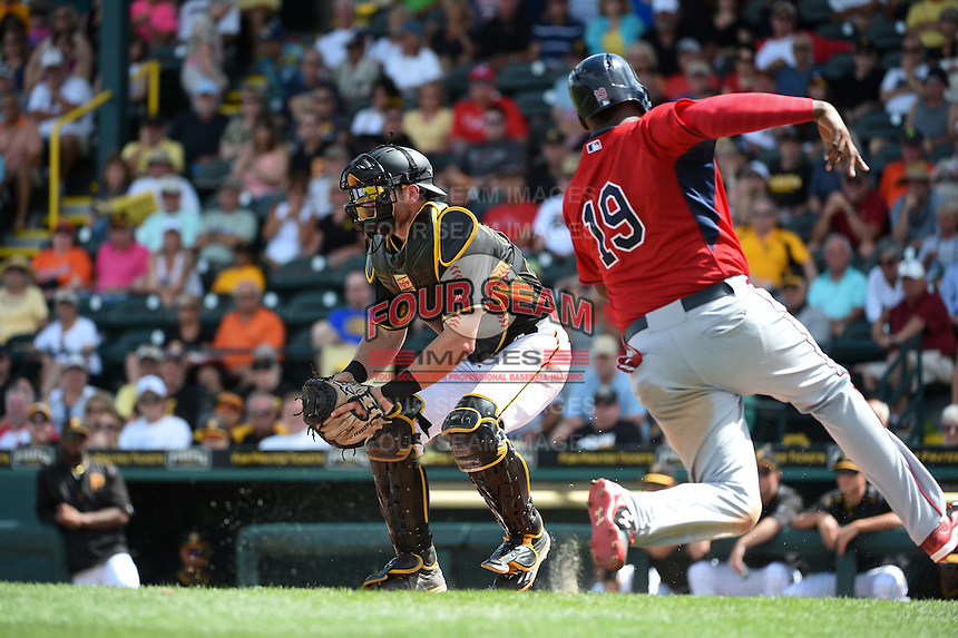 Pittsburgh Pirates catcher Francisco Cervelli (29) waits for a throw as Kennys Vargas (19) slides in during a Spring Training game against the Minnesota Twins on March 13, 2015 at McKechnie Field in Bradenton, Florida.  Minnesota defeated Pittsburgh 8-3.  (Mike Janes/Four Seam Images)