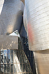 Close-up detail of Guggenheim Museum, Bilbao, Basque Country, Spain