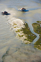 Europe/France/Aquitaine/33/Gironde/Bassin d'Arcachon: Cabanes Tchanquées de l'Ile aux Oiseaux  -Vue aérienne