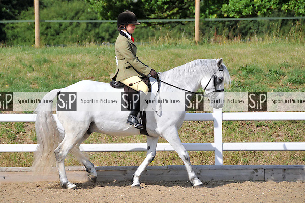 Classes 17 to 21. Eastern Counties Area Connemara Show. Brook Farm Training Centre. Essex. 04/07/2015. MANDATORY Credit Ellen Szalai/Sportinpictures - NO UNAUTHORISED USE - 07837 394578