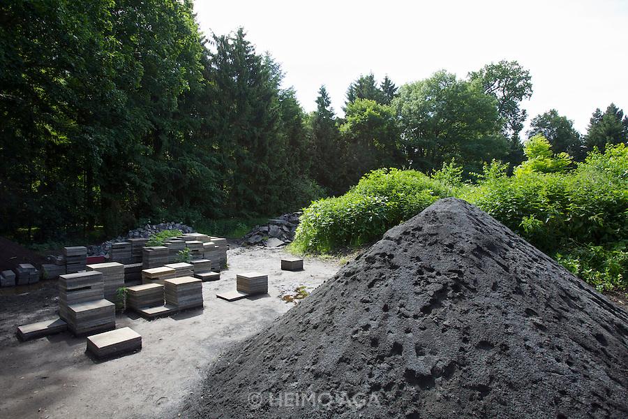 dOCUMENTA (13) in Kassel, Germany..Karlsaue..Pierre Huyghe. Untitled, 2011-12.