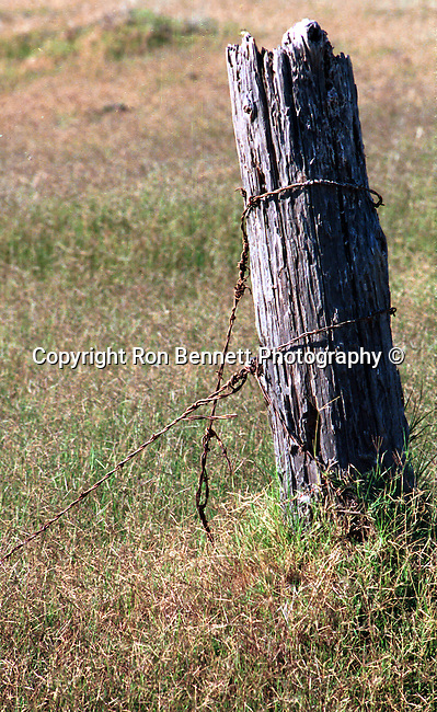 Fence post in field California, California, West Coast of US, Golden State, 31st State, Fine Art Photography by Ron Bennett, Fine Art, Fine Art photography, Art Photography, Copyright RonBennettPhotography.com ©