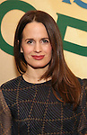 Elizabeth Reaser attends the press reception for the Opening Night of the Lincoln Center Theater Production of 'The Babylon Line'  at the Mitzi E. Newhouse Theatre on December 5, 2016 in New York City.