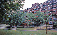 London: Pimlico, Lillington Gardens Estate, Vauxhall Bridge Rd. (The noise of traffic from road barely audible. Sounds like a forest--lovely.) Photo '90.