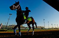 04-30-18 Kentucky Derby and Oaks Preparations