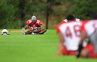 Jul 31, 2009; Flagstaff, AZ, USA; Arizona Cardinals cornerback Bryant McFadden stretches during training camp on the campus of Northern Arizona University. Mandatory Credit: Mark J. Rebilas-