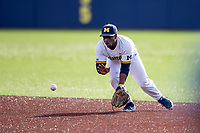 Michigan Wolverines second baseman Ako Thomas (4) fields a ground ball against the San Jose State Spartans on March 27, 2019 in Game 1 of the NCAA baseball doubleheader at Ray Fisher Stadium in Ann Arbor, Michigan. Michigan defeated San Jose State 1-0. (Andrew Woolley/Four Seam Images)