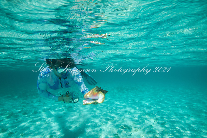 Snorkeler with a conch shell<br /> St. John<br /> U.S. Virgin Islands