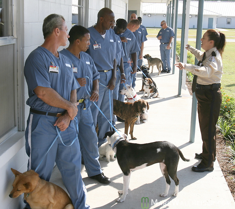 Officer Ginger Eustice, right, gives instructions to the inmates of Taylor Correctional  Institution Work Camp and the dogs they trained as part of eight week training program U.T.O.P.I.A., Undergoing Training & Obedience in Prison to Increase Adoptability for the Tallahassee Animal Service Center July 25, 2007.  The graduation was the culmination of the first class of dogs to go through the training.  (Mark Wallheiser/TallahasseeStock.com)