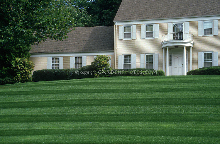 Gorgeous lawn and landscaping, perfect grass with stripes, on a slope, with yellow Colonial style home with shutters, front door portico, balcony, arched window, roof, trees, and immaculate green grass