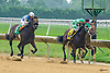 Dream of Peace winning at Delaware Park on 8/1/16