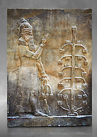Stone relief sculptured panel of a Genie with poppy seed heads next ro the tree of life.  Inv AO 19869 from Dur Sharrukin the palace of Assyrian king Sargon II at Khorsabad, 713-706 BC.  Louvre Museum Room 4 , Paris