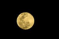 SAO PAULO, SP, 10.08.2014 - SUPER LUA - O fenomeno que ocorre pela terceira vez este ano conhecido como a super Lua foi visto na cidade de Sao Paulo, no fim da tarde deste domingo,10. (Foto: Andre Hanni /Brazil Photo Press).