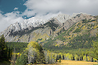 Hillsdale Meadow, Sawback Range, Autumn Color, Banff National Park