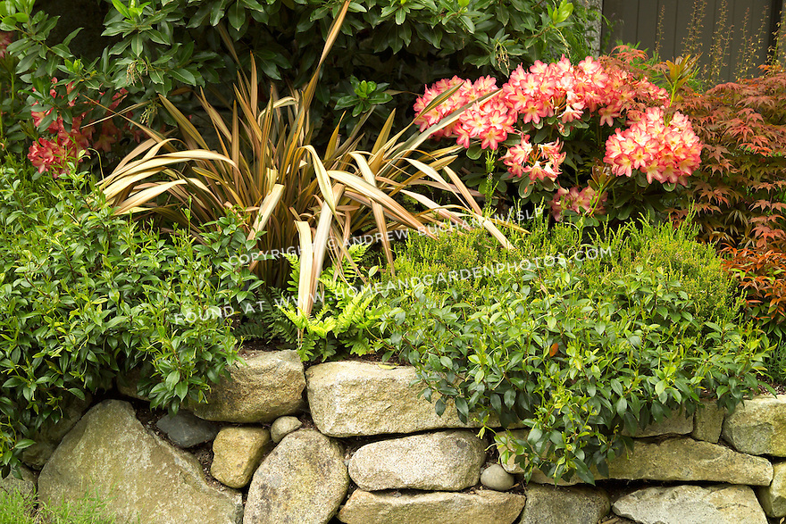 A Garden Scene Of A Beautifully Matched, Textural, And Colorful Vignette Of  A Residential