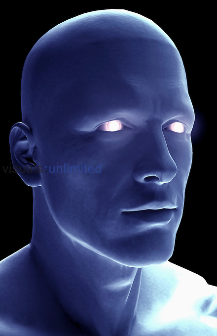 An anterolateral view (right side) of the head. The eyes are glowing. Royalty Free
