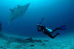 A photographer shoots a Manta ray, Manta birostris, Manta Sandy, Dampier Strait, Raja Ampat, West Papua, Indonesia, Pacific Ocean (No MR)
