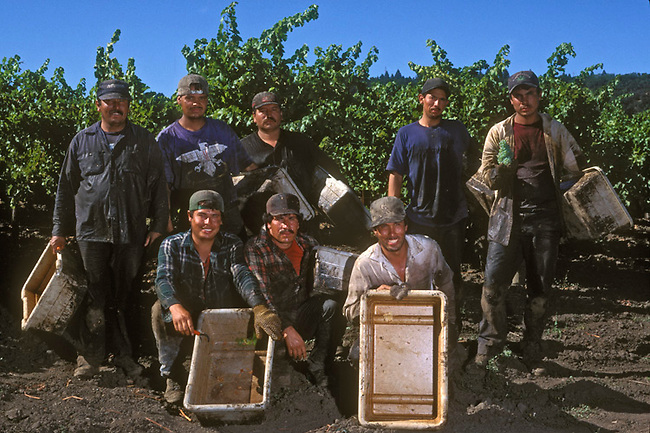 Grape pickers pose after day of grape picking