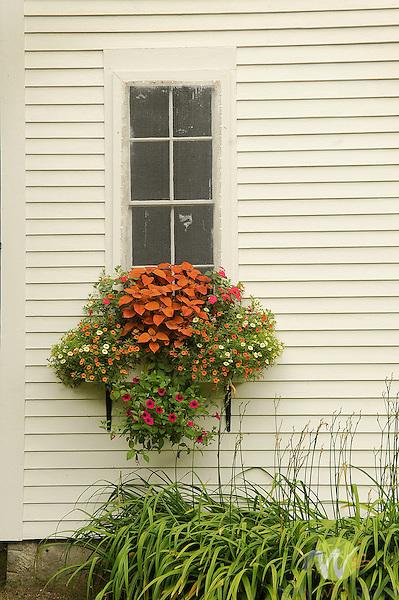 Lower Sunday River Schoolhouse 1895..Window box.