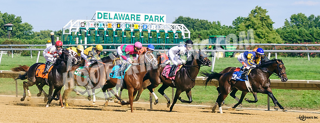 """Mister Nofty winning The Grover """"Buddy"""" Delp Memorial Stakes at Delaware Park on 8/24/16"""