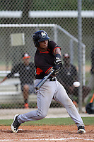 Miami Marlins catcher Angel Reyes #38 at bat during an Instructional League intramural game on September 30, 2014 at Roger Dean Complex in Jupiter, Florida.  (Stacy Jo Grant/Four Seam Images)
