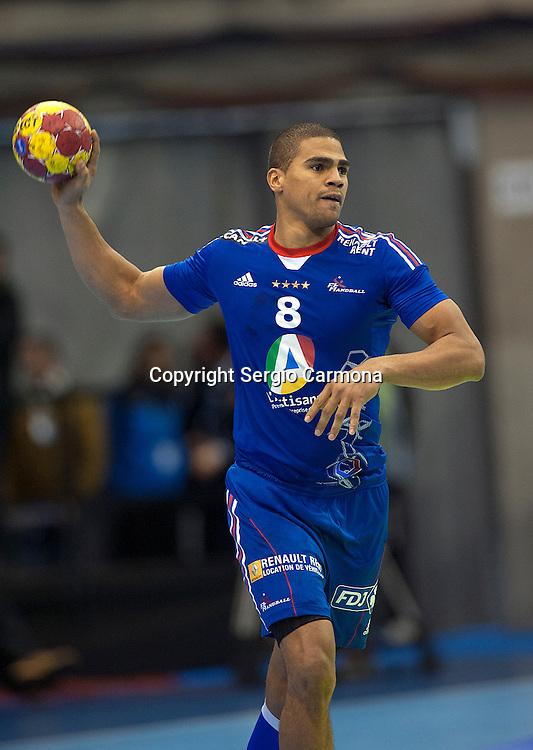 23rd IHF Men's World Championship; FRA-BRA.Daniel Narcisse (FRA).