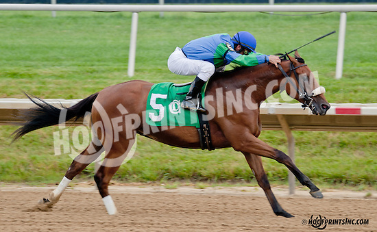 Crash the Party winning at Delaware Park on 7/8/13
