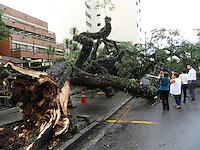 SÃO PAULO - SP -  08 DE MARÇO 2013. QUEDA ARVORE, na Rua Dep Lacerda Franco, alt 342 - Pinheiros, sobre dois carros, ninguém ficou ferido. O transito na região estra complicado semaforos sem energia elétrica. FOTO: MAURICIO CAMARGO / BRAZIL PHOTO PRESS.