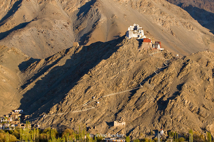 Namgya Tsemo Monastery or Namgya Tsemo  Gompa as seen from the Shanti Stupa. Leh, Jammu and Kashmir,  India